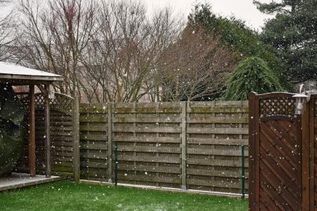Laat het sneeuwen - Let it Snow 001